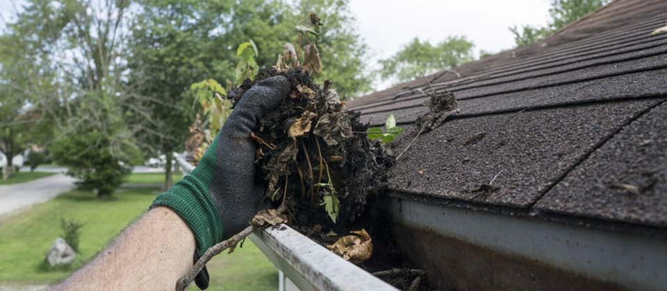 An image of Gutters can present a source of damage to your property if allowed to clog.  Call us for efficient cleaning and clearing services. goes here.